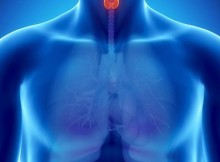 Plants-and-Herbs-that-Can-Boost-Lung-and-Respiratory-Health