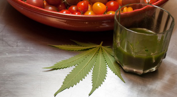 Studies-Prove-that-Cannabis-Juice-Replaces-Several-Medications.