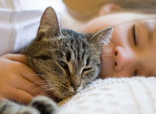 Can-Your-Cat's-Purrs-Bring-You-Good-Health