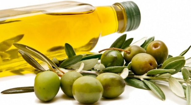 Can-Olive-Oil-Reduce-the-DNA-Damage-Caused-by-Eating-GMOs