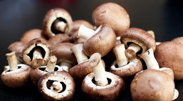 What-Are-Five-Reasons-Why-You-Should-Eat-Mushrooms