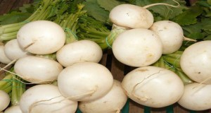 turnip-kills-cancer