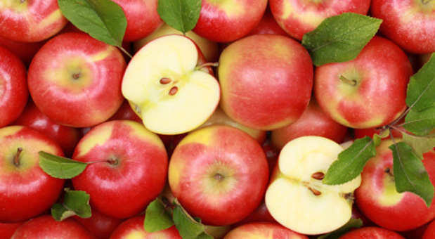 Why-American-Apples-Are-No-Longer-Imported-to-Europe