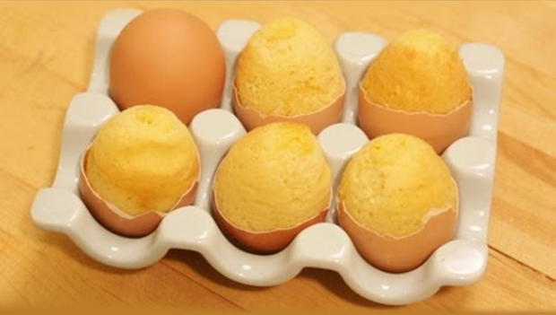 Know About Egg Shells